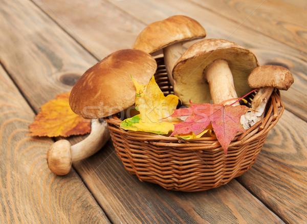 Paddestoel champignons mand houten textuur hout Stockfoto © Es75