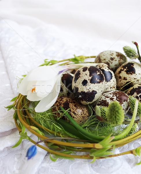 Easter eggs primavera crocus pussy salice fiore Foto d'archivio © Es75