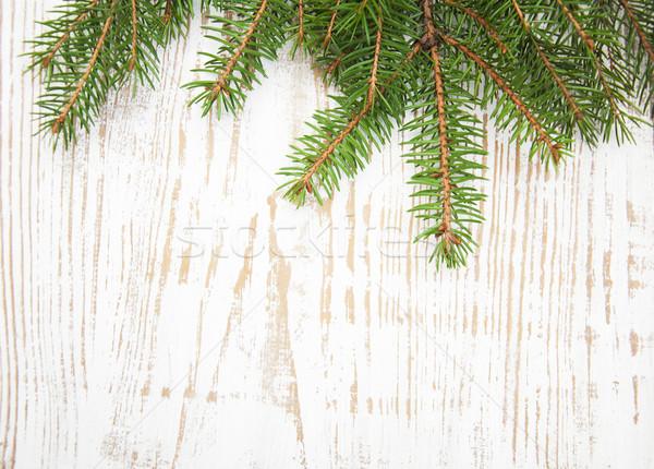 Kiefer grünen Holz Hintergrund Raum Winter Stock foto © Es75