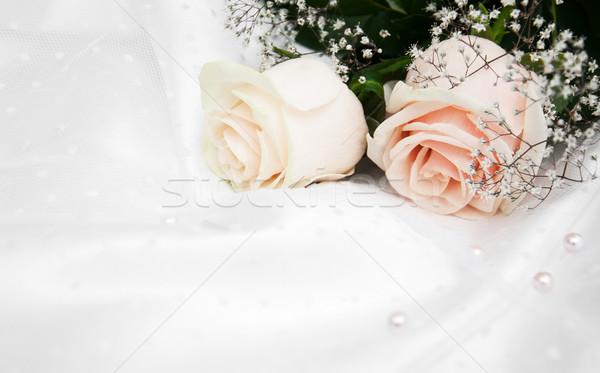 Rozen witte zijde twee bloemen textuur Stockfoto © Es75