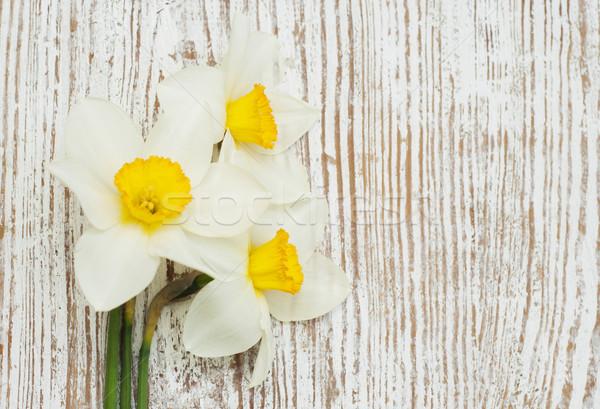 Narcissen voorjaar oude houten blad zomer Stockfoto © Es75