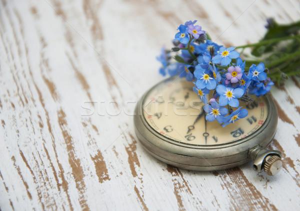 Pocket watch Stock photo © Es75