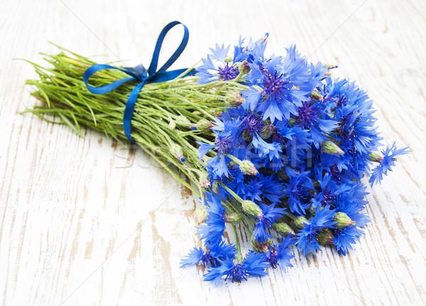 синий старые белый цветы лист Сток-фото © Es75