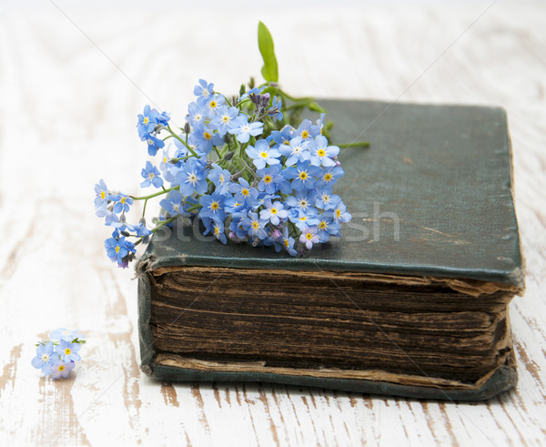 Forget-me-nots flowers and old book Stock photo © Es75