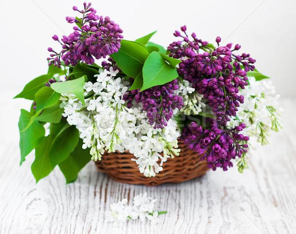 букет сирень корзины цветок природы красоту Сток-фото © Es75