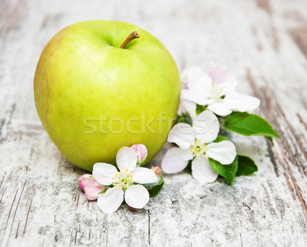 apple and apple tree blossoms Stock photo © Es75