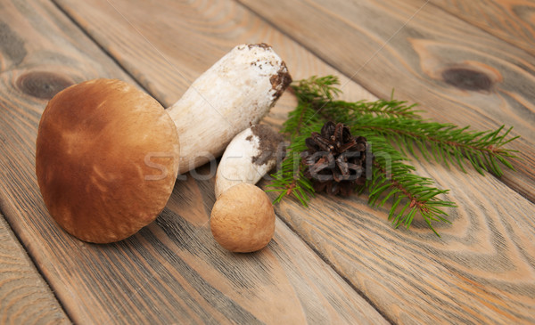 Paddestoel champignons oude houten textuur hout Stockfoto © Es75