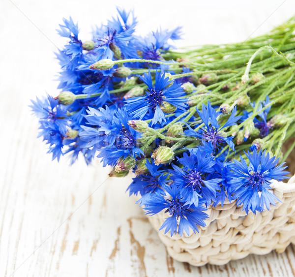 Niebieski starych biały kwiaty liści Zdjęcia stock © Es75