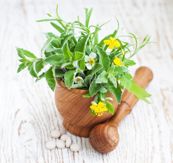Médecine alternative guérison herbes fleur feuille santé Photo stock © Es75
