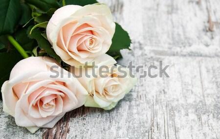 Stock photo: Light Pink roses