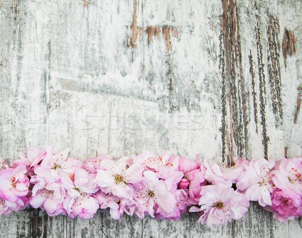 Sakura fiore vecchio legno confine rosa Foto d'archivio © Es75