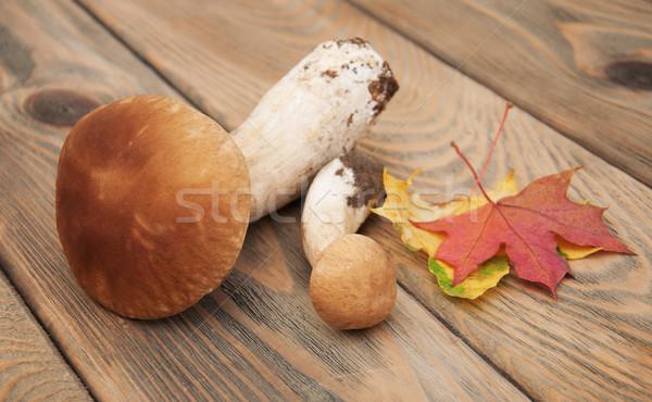 boletus mushrooms  Stock photo © Es75