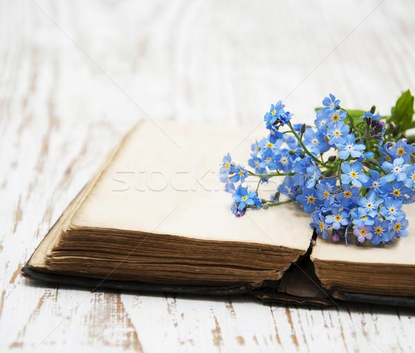 çiçekler eski kitap kitaplar arka plan güzellik Stok fotoğraf © Es75