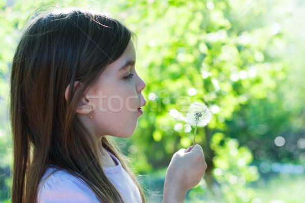 Kız karahindiba küçük kız bahar Stok fotoğraf © Es75
