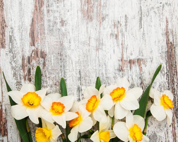 Nárciszok fából készült keret nárcisz virágok húsvét Stock fotó © Es75