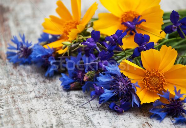 Flores silvestres velho flores textura primavera Foto stock © Es75