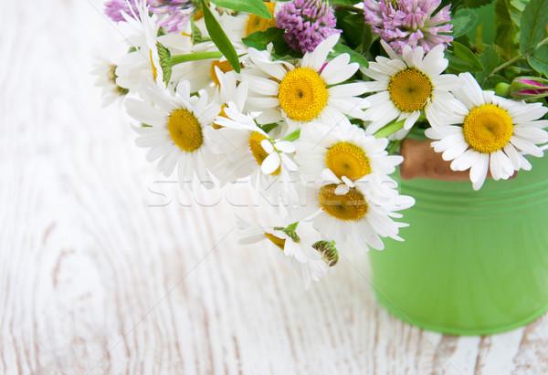 Cubo flores silvestres primavera naturaleza hoja Foto stock © Es75