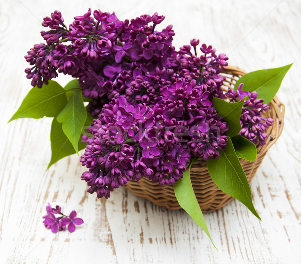 summer lilac flowers in basket Stock photo © Es75