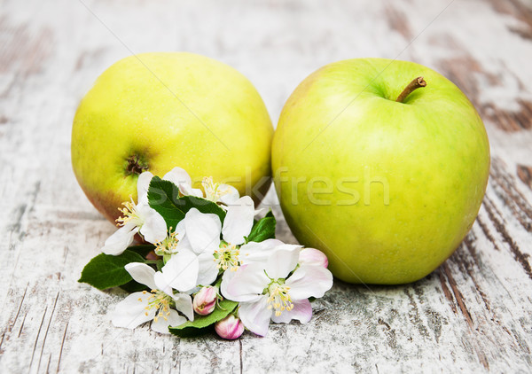 apples  and apple tree blossoms Stock photo © Es75
