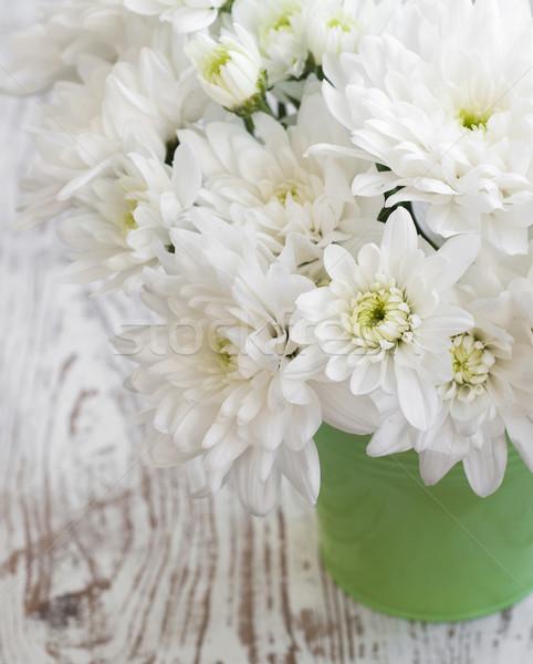Biały chryzantema wiadro kwiat charakter Zdjęcia stock © Es75