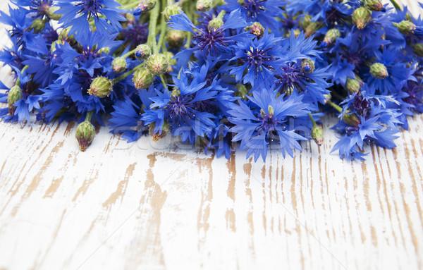 Cornflowers Stock photo © Es75
