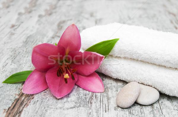 Stok fotoğraf: Spa · ürünleri · pembe · zambak · masaj