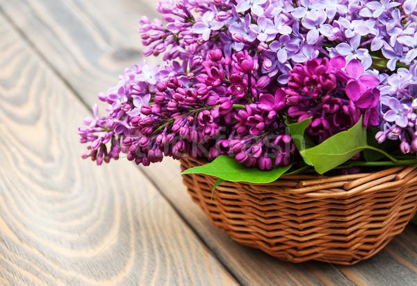 сирень цветы старые древесины природы Сток-фото © Es75