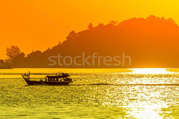 Vitorlás közelkép fa nap nyár narancs Stock fotó © esatphotography