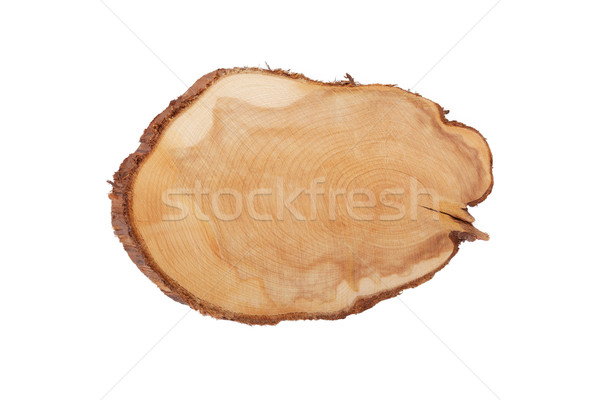 Juniper texture cut wood isolated on white Stock photo © Escander81