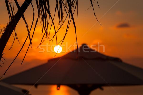Pôr do sol mar palmeira guarda-sol água madeira Foto stock © Escander81