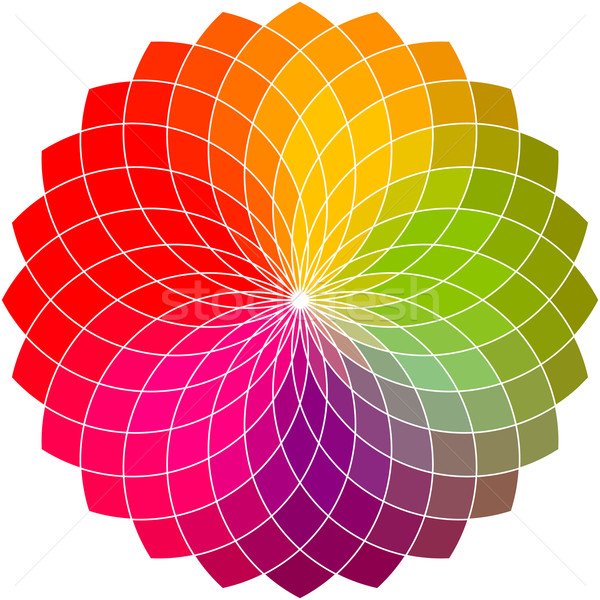 Color flower vector wheel  Stock photo © ESSL