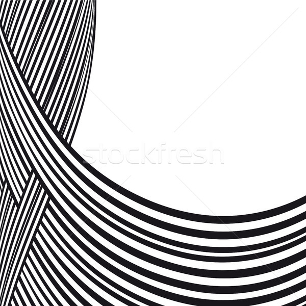 Abstract background. Black and white curve lines with frame for message Stock photo © ESSL