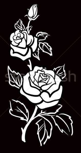 Vector graphic art of Rose flower with leaves Stock photo © ESSL
