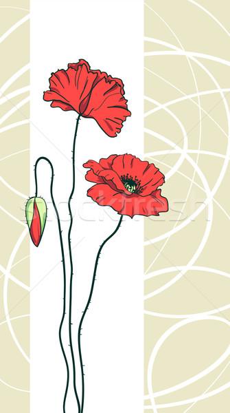 Foto stock: Vermelho · floral · casamento · projeto · jardim
