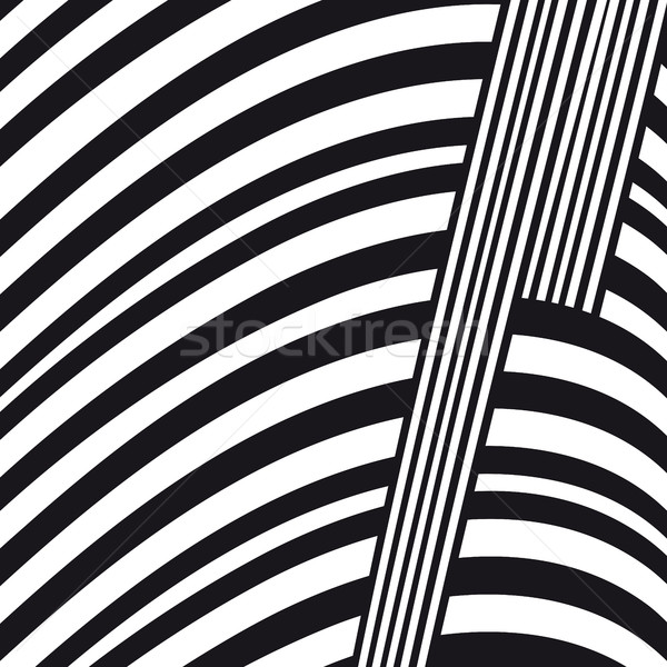 Abstract black and white lines vector composition Stock photo © ESSL