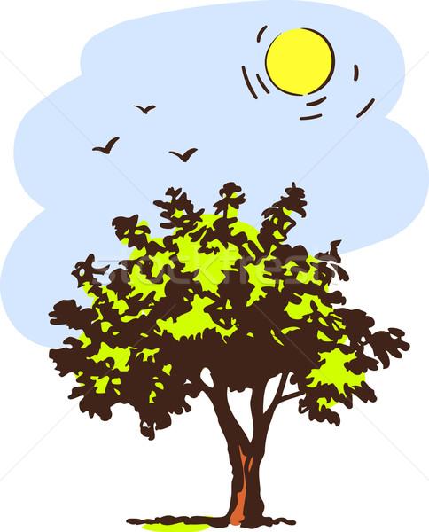 Printemps arbre forêt soleil résumé feuille Photo stock © ESSL