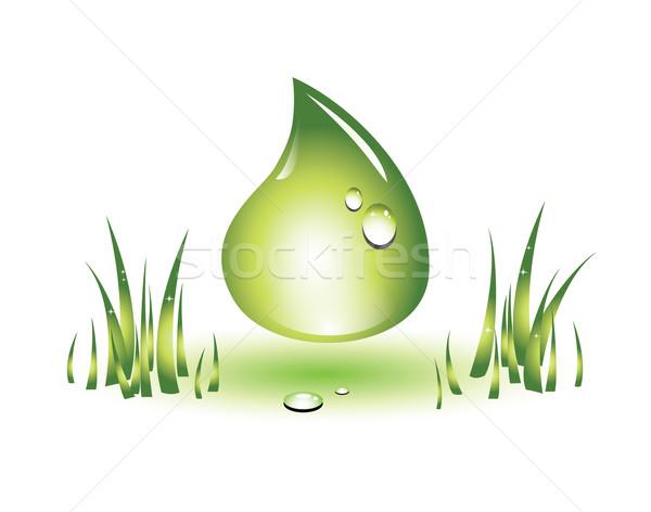 Zöld csepp törődés védelem nő természetes Stock fotó © evetodew
