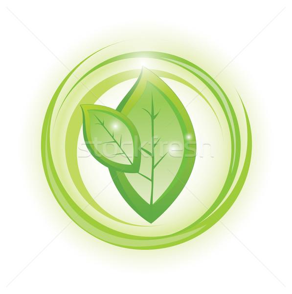 öko szimbólum kettő levelek körök fenntartható Stock fotó © evetodew