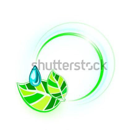 Laisse gouttelette anneaux feuille fond vert Photo stock © evetodew
