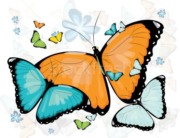 Gyűjtemény pillangók virág pillangó természet narancs Stock fotó © evetodew