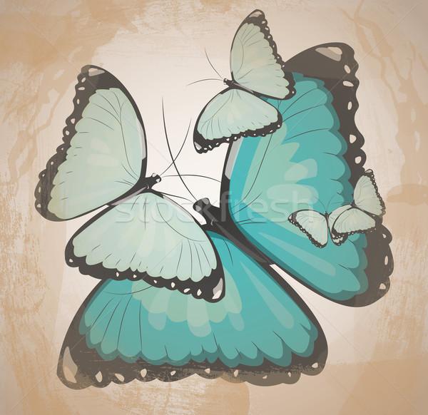 Retro pillangók pillangó szabadság klasszikus szabad Stock fotó © evetodew