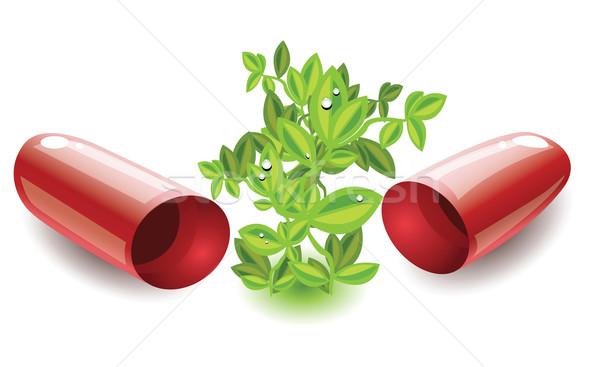 Orvosi kapszula növekvő gyógynövény gyógyszer piros Stock fotó © evetodew