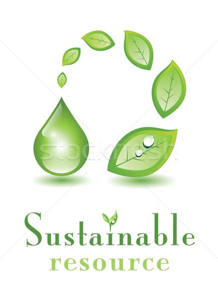 Sostenibile risorsa foglie drop acqua Foto d'archivio © evetodew