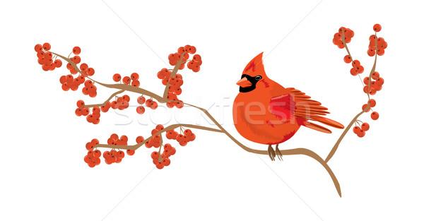 Piros ág ribiszke étel természet gyümölcs Stock fotó © evetodew