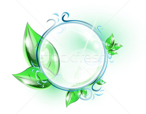 üveg gömbök átlátszó gömb növények absztrakt Stock fotó © evetodew
