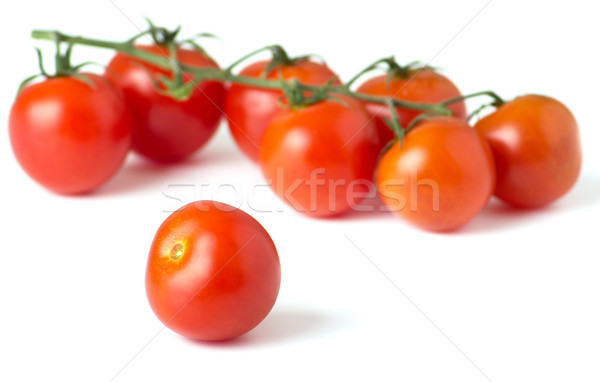 Ripe fresh cherry tomatoes on branch  Stock photo © evgenyatamanenko