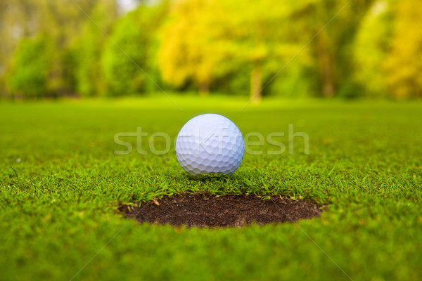 golf ball on lip of cup.  Stock photo © EwaStudio
