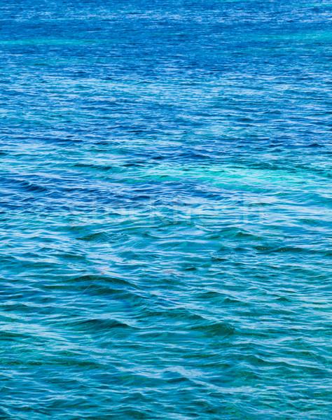 Blue sea with waves Stock photo © EwaStudio