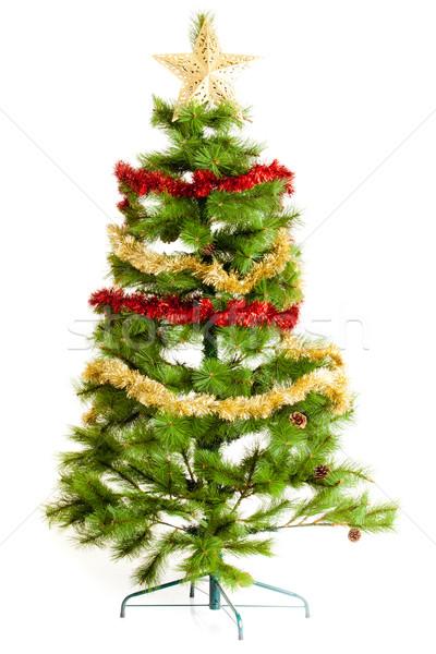 Karácsonyfa izolált háttér zöld éjszaka fehér Stock fotó © EwaStudio
