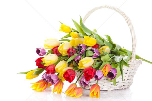 Cesta tulipanes aislado blanco ramo agua Foto stock © EwaStudio